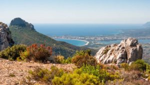 Read more about the article Best Things to do in Ogliastra