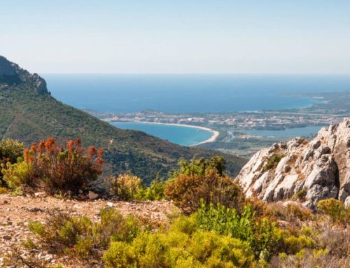 Best Things to do in Ogliastra